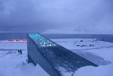 The Storage of the First Gene Bank Collection Samples into the Svalbard Global Seed  Vault